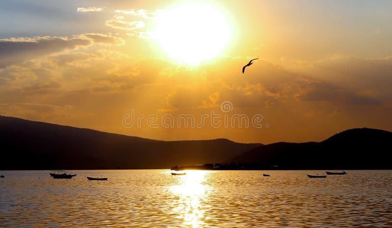 Поднимать к Солнцу стоковые фото