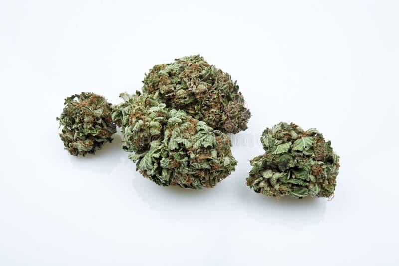 поднимающее вверх близкой марихуаны детали медицинское стоковое изображение rf
