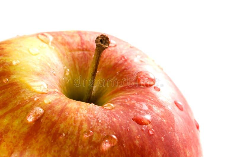 поднимающее вверх яблока близкое стоковые изображения rf