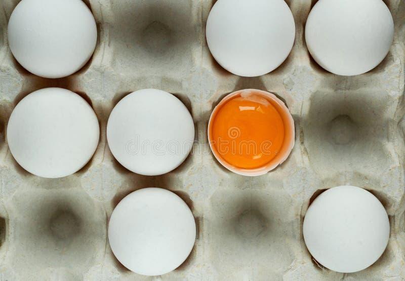 Поднос белых яя цыпленка с половиной сломанных среди других яя в картонной коробке бумаги ( Важная деталь - стоковое фото