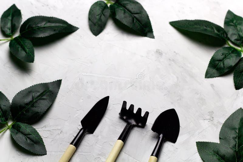 подняли рамка листья и садовые инструменты, концепция весны садовничая стоковое изображение rf