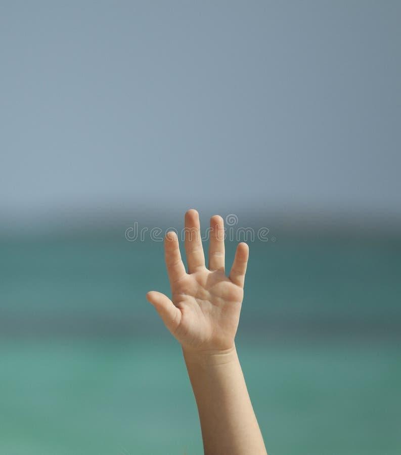 поднятая рука стоковые фото