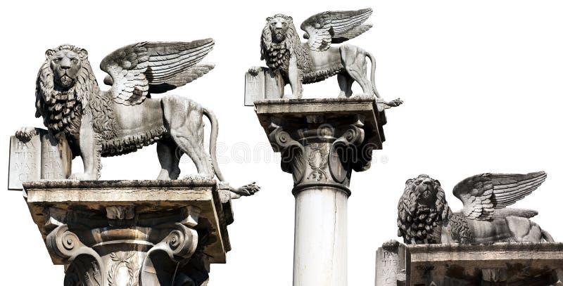 Подогнали лев St Mark изолировал на бело- Вероне Италии стоковая фотография rf