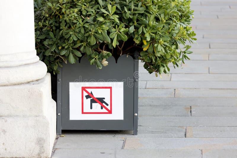Подпишите которое говорит - никакая собака не мочится здесь стоковое изображение rf