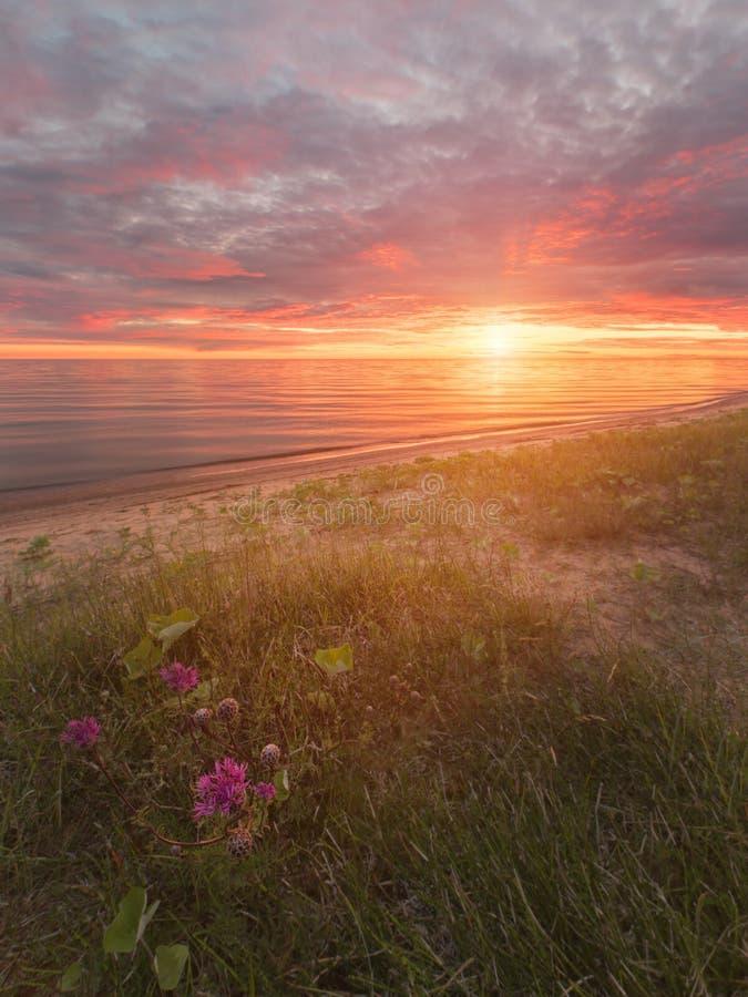 Подпор на озере Chudskoy стоковое изображение rf