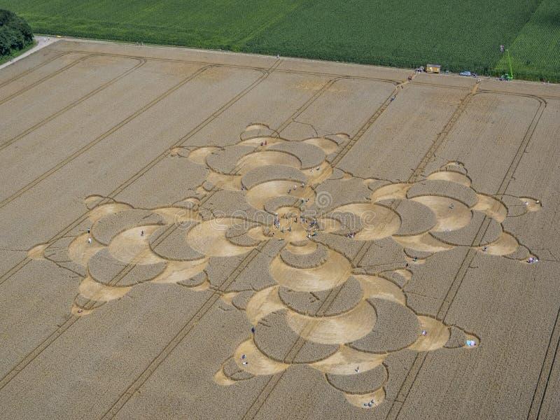 Подрежьте круг в ниве около Mammendorf, Баварии, Германии стоковое фото rf
