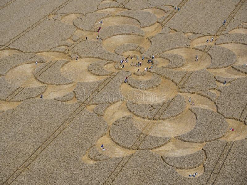 Подрежьте круг в ниве около Mammendorf, Баварии, Германии стоковые изображения rf