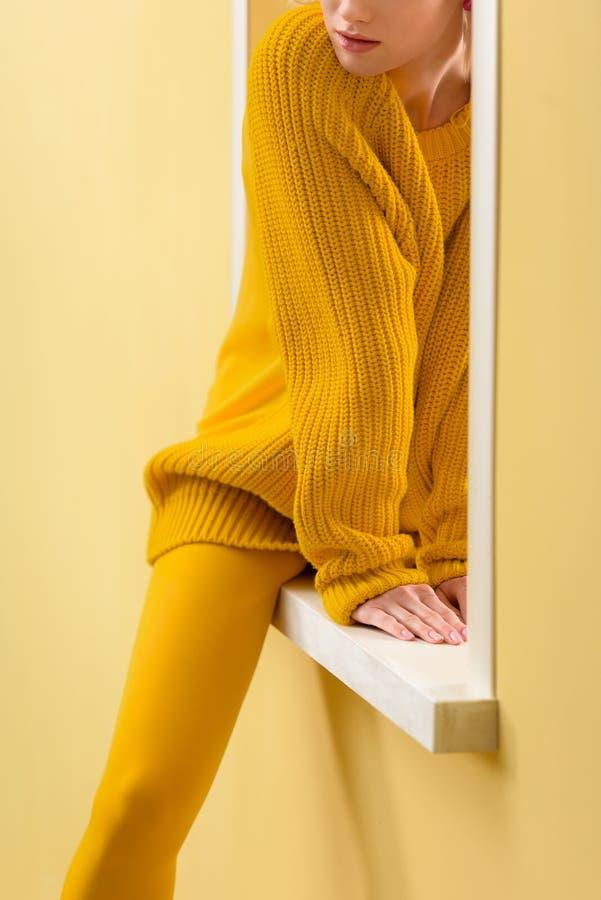 подрезанная съемка стильной женщины стоковое изображение rf