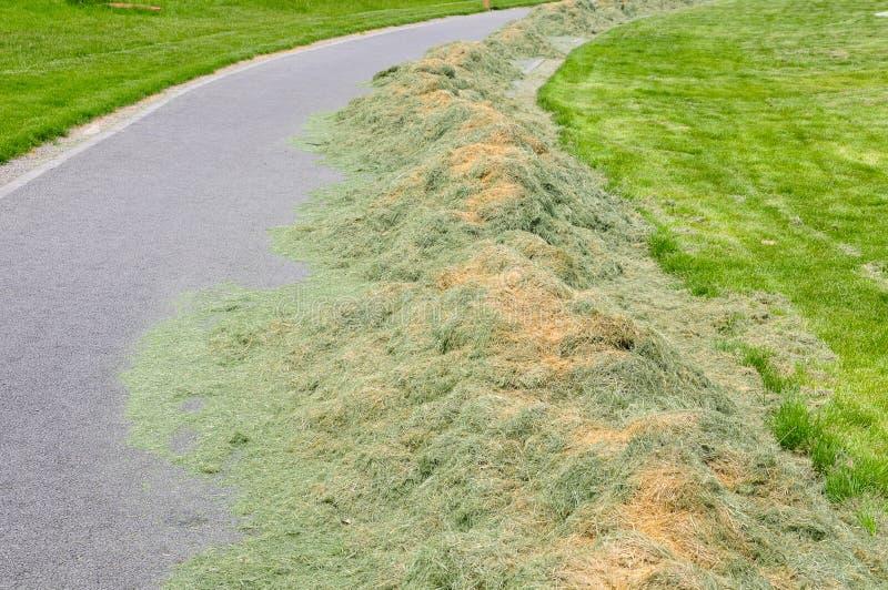 Подрезанное сено около лужайки стоковые фотографии rf