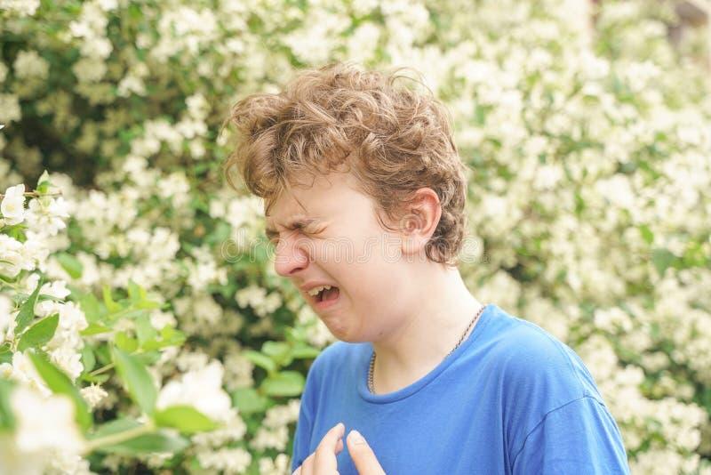 Подросток с аллергиями стоя в голубой футболке среди кустов жасмина и страдает от плохого здоровья стоковые изображения
