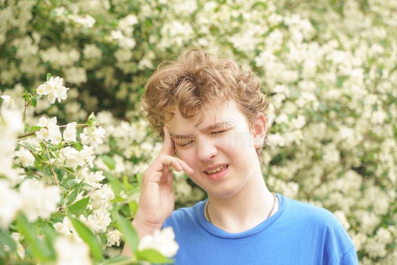 Подросток с аллергиями стоя в голубой футболке среди кустов жасмина и страдает от плохого здоровья стоковая фотография rf