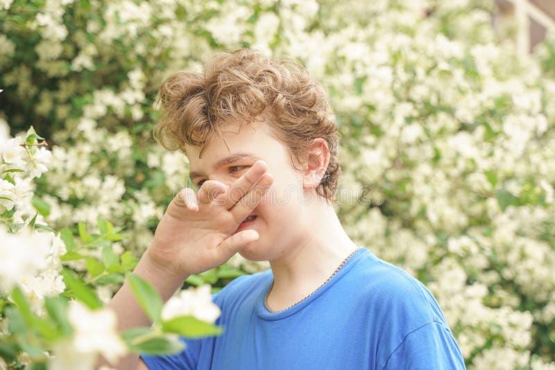 Подросток с аллергиями стоя в голубой футболке среди кустов жасмина и страдает от плохого здоровья стоковая фотография
