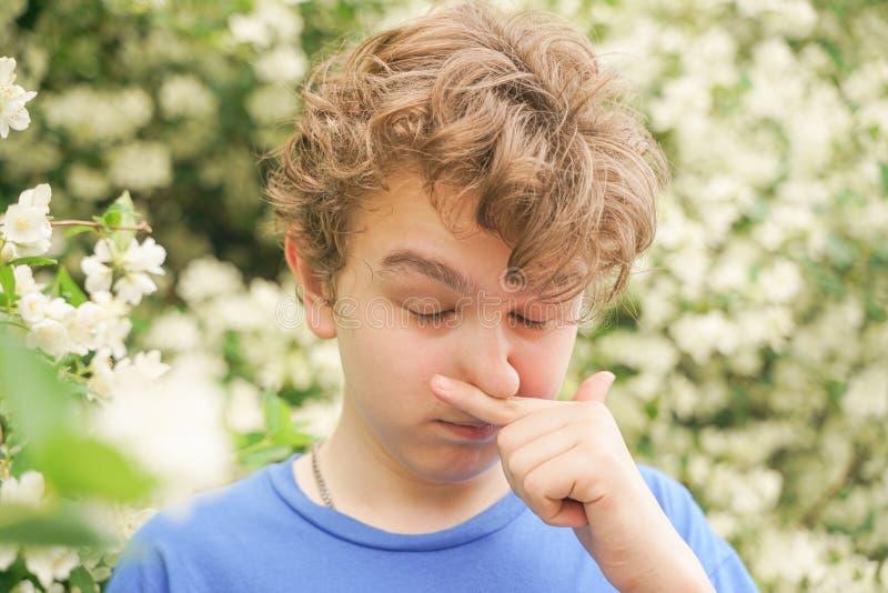 Подросток с аллергиями стоя в голубой футболке среди кустов жасмина и страдает от плохого здоровья стоковые фотографии rf
