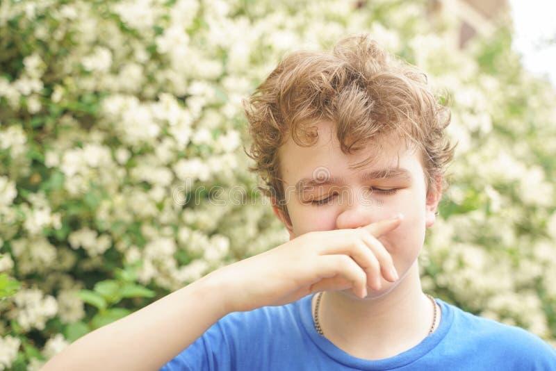Подросток с аллергиями стоя в голубой футболке среди кустов жасмина и страдает от плохого здоровья стоковое фото rf