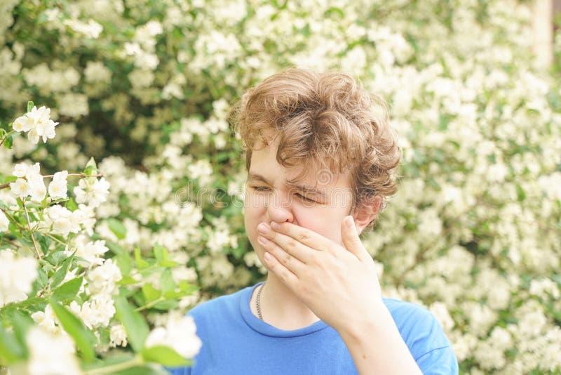 Подросток с аллергиями стоя в голубой футболке среди кустов жасмина и страдает от плохого здоровья стоковое изображение