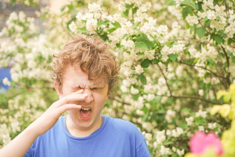 Подросток с аллергиями стоя в голубой футболке среди кустов жасмина и страдает от плохого здоровья стоковое фото