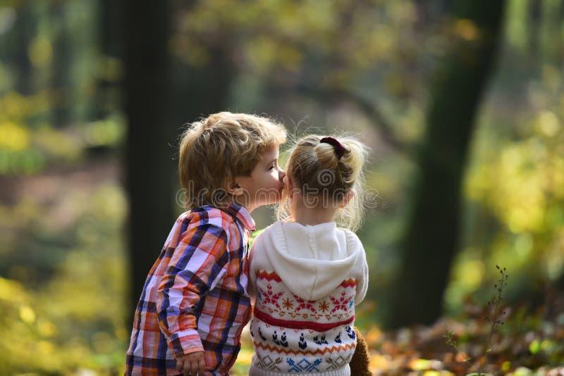 Подруга поцелуя мальчика малая в сестре поцелуя брата леса осени с влюбленностью в древесинах сердце подарка дня принципиальной с стоковая фотография