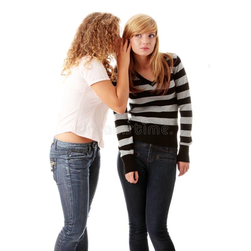 подруги счастливые говорящ 2 детенышам стоковое изображение