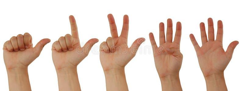 подсчитывать руки стоковая фотография rf