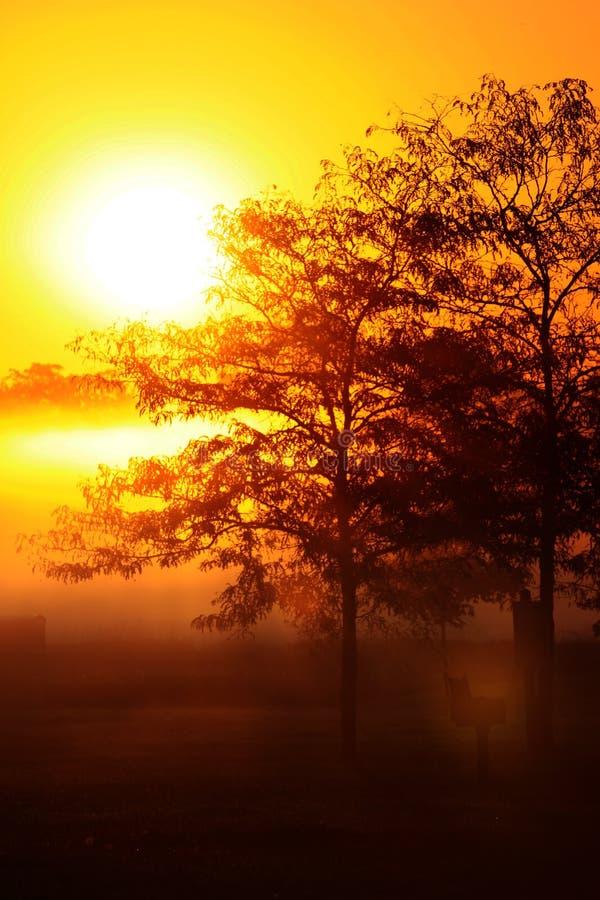 Подъем Sun стоковое фото