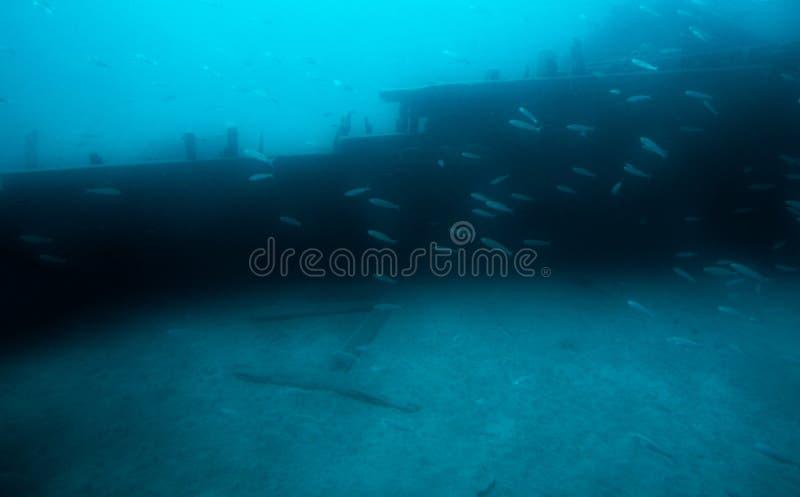 под водой стоковая фотография rf