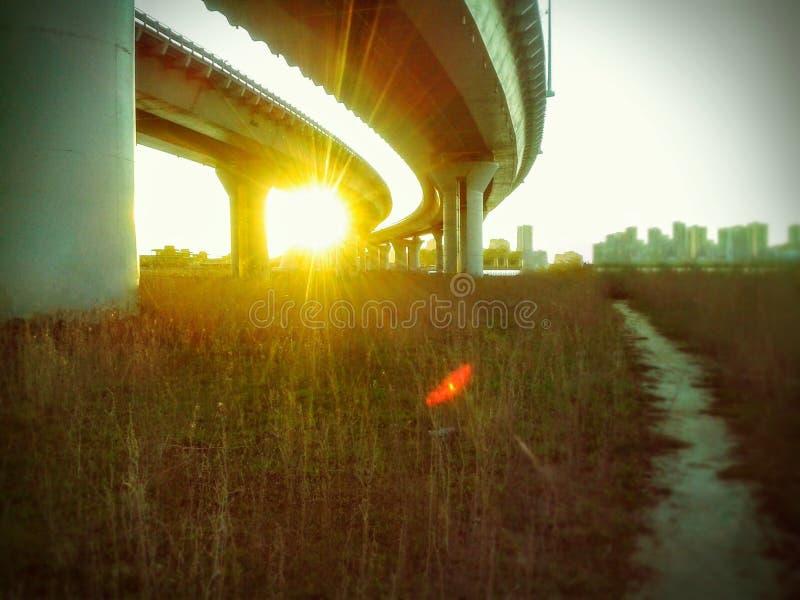 Под заходом солнца моста стоковые изображения rf