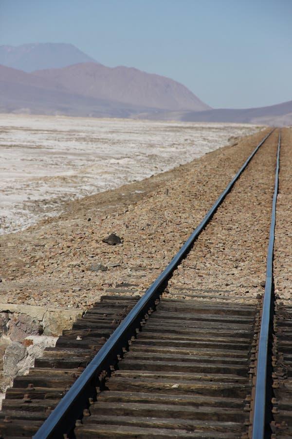 Поезд прокладывает рельсы на квартирах соли стоковые фото
