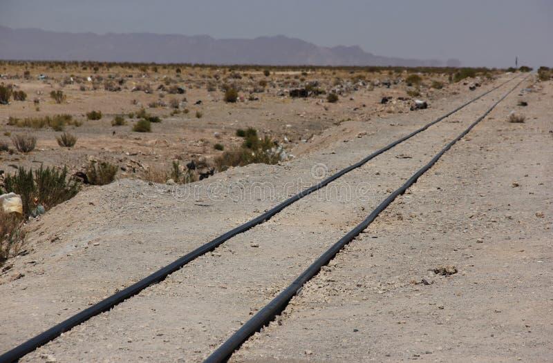 Поезд прокладывает рельсы на квартирах соли стоковые фотографии rf
