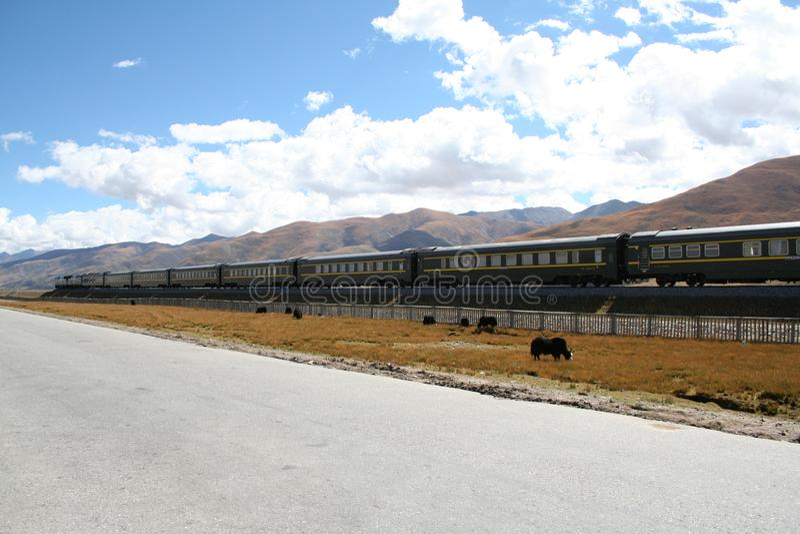 поезд пропуская до Лхаса Тибет стоковые фото