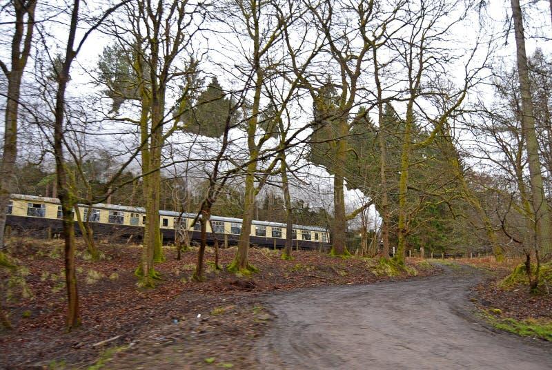 Поезд пара быстро проходя через деревья стоковая фотография rf