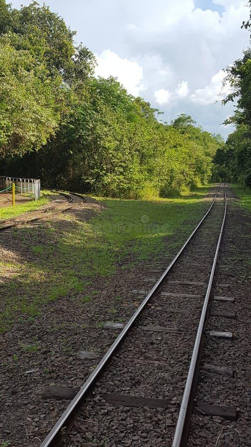 Поезд рельса стоковые фото