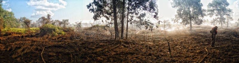 Пожарная команда лесного пожара стоковая фотография rf