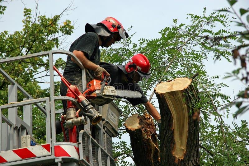 пожарные 2 стоковые изображения rf