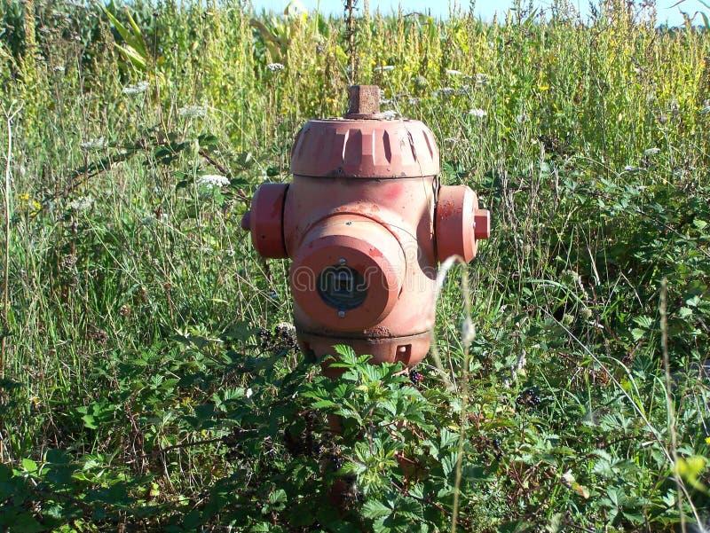 Пожарный гидрант стоковые фотографии rf