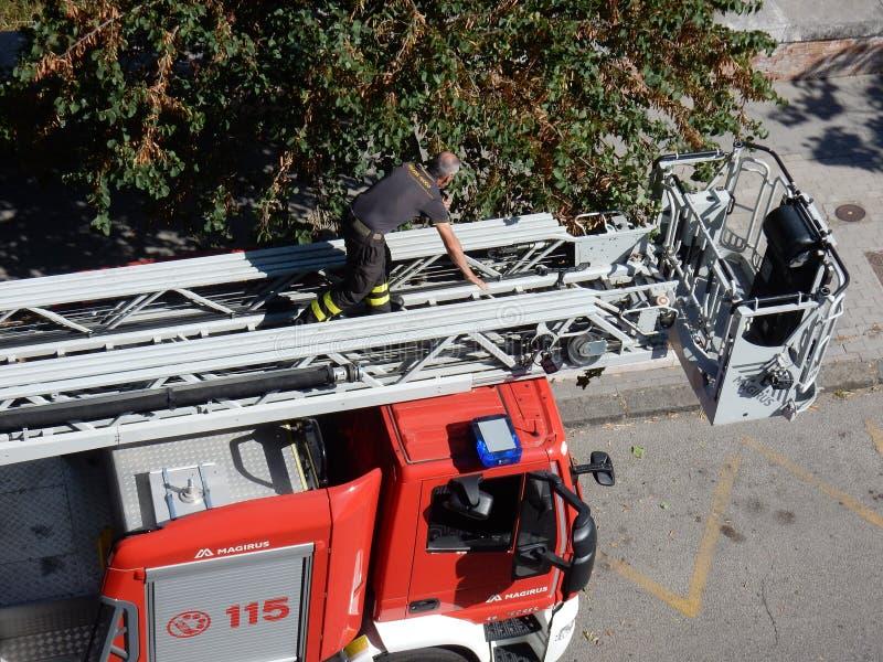 Пожарный на масштабе автомобиля стоковое изображение rf
