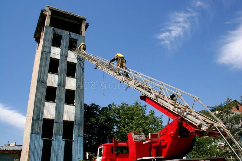 Пожарный на лестницах стоковые фотографии rf