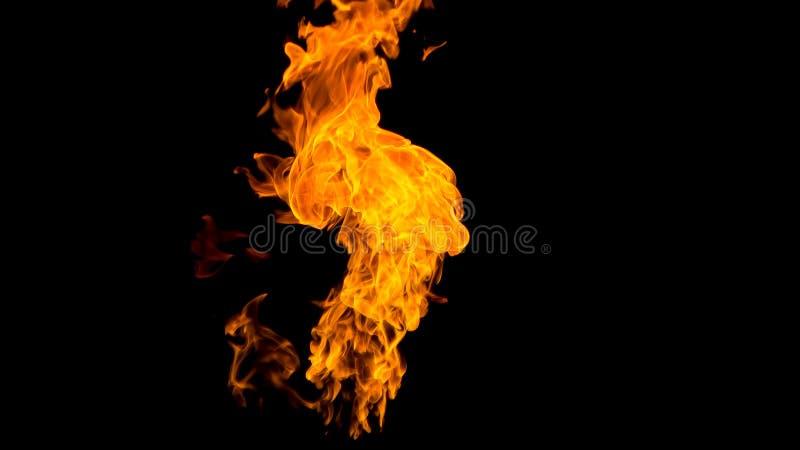 пожар детали предпосылки черный пылает хорошая вертикаль highlights мягко огонь на черной изолированной предпосылке Картины огня стоковая фотография rf
