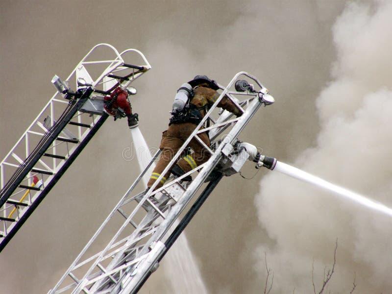 пожар дракой стоковые изображения rf
