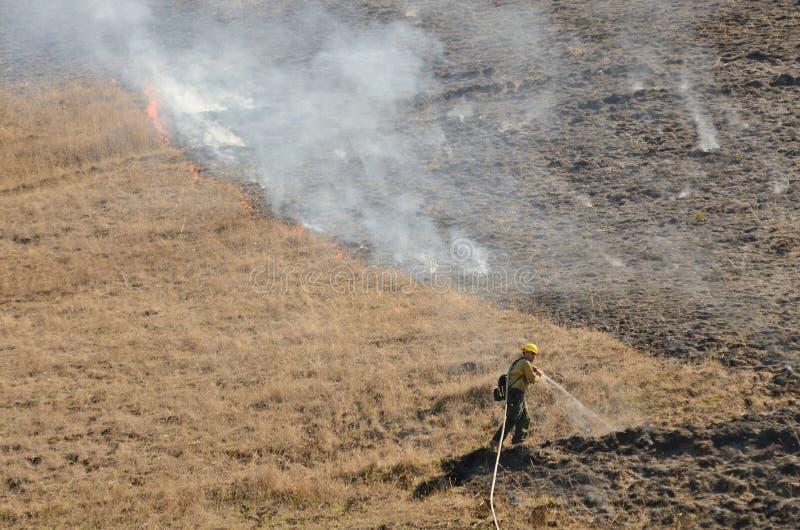 Пожар травы стоковые фото