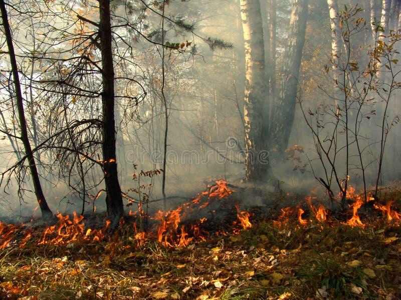 Download пожар стоковое изображение. изображение насчитывающей загрязнение - 494155