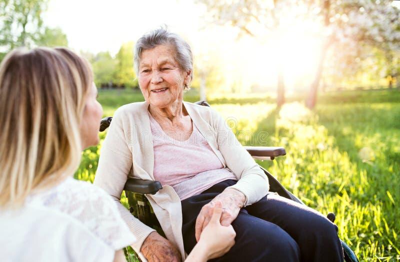 Пожилая бабушка в кресло-коляске с природой внучки весной стоковые изображения rf