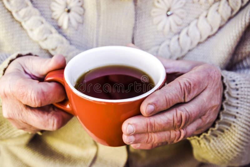 пожилая женщина держа кружку чая стоковое фото rf