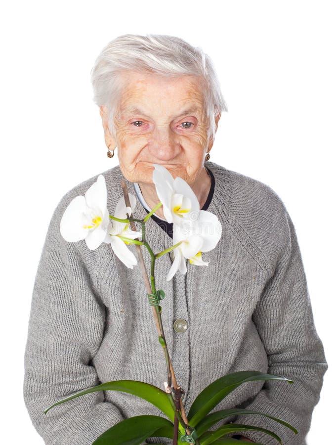 Пожилая женщина держа орхидею стоковые фотографии rf