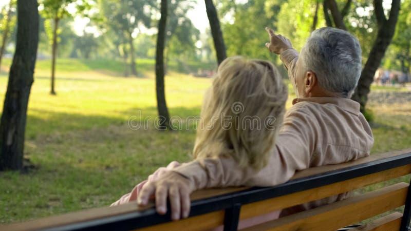 Пожилой супруг и жена ослабляя совместно в парке, человеке указывая вручную на дерево стоковые изображения