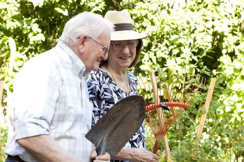 Пожилые садовники стоковая фотография