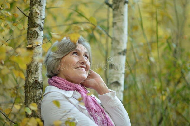 Пожилая женщина в лесе березы стоковое изображение rf