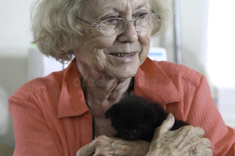 Пожилая женщина и ее любимая киска стоковое изображение rf