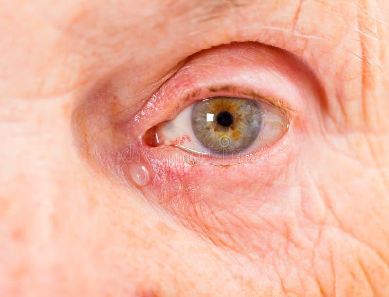 Пожилой глаз женщины стоковое изображение rf