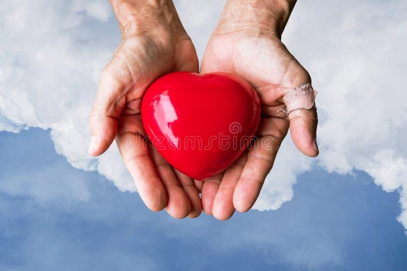 Пожилые руки при рана держа красное сердце сердца на голубом небе и белых облаках стоковая фотография rf