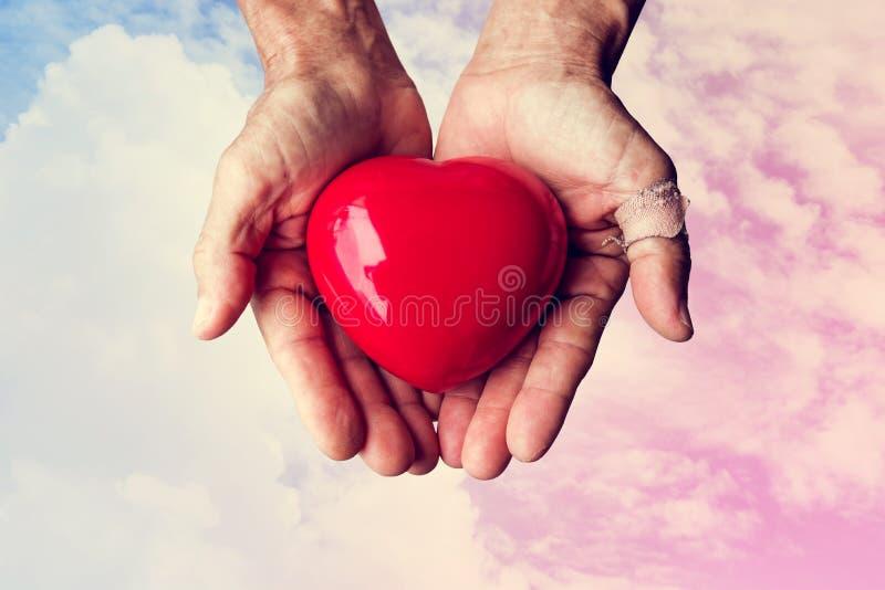 Пожилые руки при рана держа красное сердце сердца на красочном небе и белых облаках, винтажном тоне стоковое изображение rf